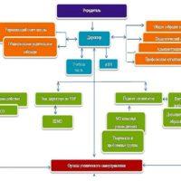 Struktura upravleniia MOU SOSh 8 g Kamenki